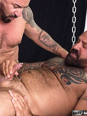 Marc Angelo and Adam Knocksville